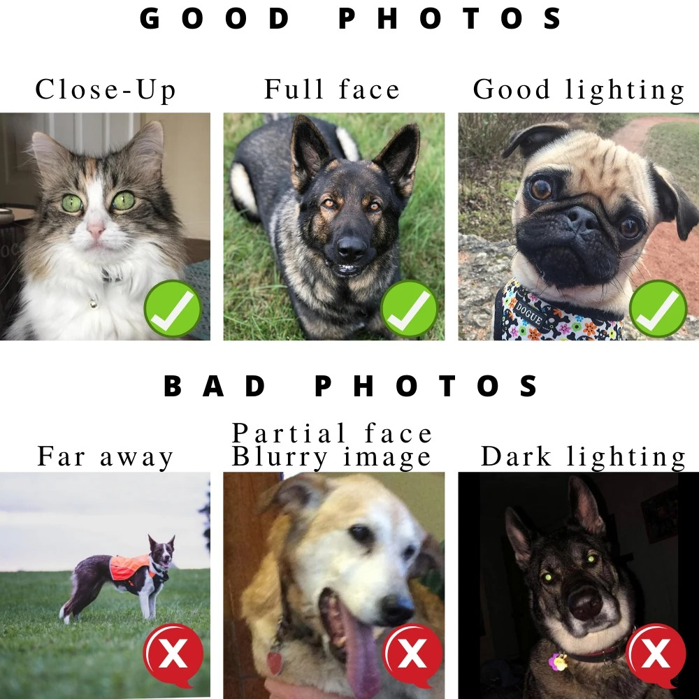 Personalized Pet Memorials photo guidelines