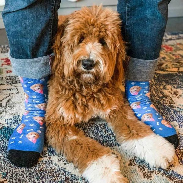 personalized dog face socks 700x700